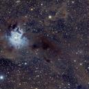 Iris nebula (NGC 7023),                                Fernando Huet