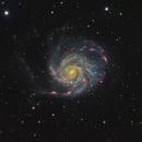 M101,                                Stephen Kirk