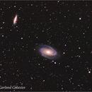 Bode , Cigar and Garland Galaxies,                                Shimon Avitan
