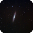 NGC253 The Sculptor Galaxy,                                Tim Anderson