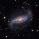 NGC 1808,                                Warren A. Keller