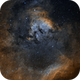 NGC 7822 in the Hubble Palette,                                Alex Roberts