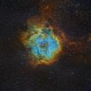 Rosette Nebula in HST palette,                                Gordon Haynes