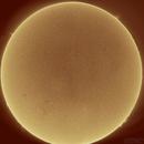 Sun,                                Jonas Aliotti Jr