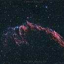 NGC-6995 Nebulosa Velo,                                Umberto Tomaselli