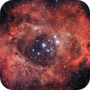 NGC 2237,                                joss750Z