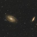 M81-M82,                                Wilson Yam