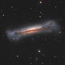 Hamburger Galaxy (NGC 3628) in Leo,                                Steve Milne