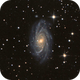 NGC 2336,                                Gotthard Stuhm
