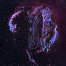 Veil Complex in Bicolor,                                Craig Prost