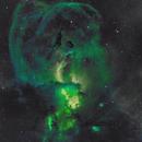 NGC 3576 en OHS - Statue of Liberty - Constellation de la Carène,                                Roger Bertuli