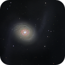 M94 2014 and 2019 combined,                                Ian Gorin