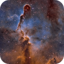 Elephant's Trunk Nebula in the Hubble Palette,                                Chuck's Astrophot...