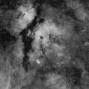 IC 1318: Gamma Cygni Nebula in Ha (2014),                                Kurt Johnston