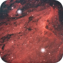 Pelican Nebula - IC 5067,                                Riccardo A. Balle...