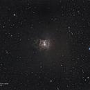 Sh2-136 ou NGC 7023,                                João Gabriel Fonseca Porto