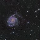 M101 - The Pinwheel Galaxy,                                Thomas Westphal