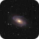 M81-M82-NGC3077,                                Julien