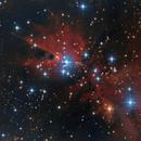 NGC2264,                                Jean Guy Moreau