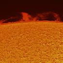 Prominences complex - H-alpha - 21.07.2015,                                Łukasz Sujka