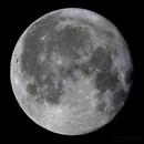 Lunar Mosaic,                                Nikkolai Davenport