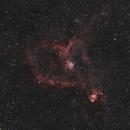Heart Nebula - IC1805,                                Gideon Golan