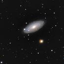 NGC 2841 The tiger eye galaxy,                                Jürgen Ehnes