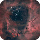 NGC2244,                                Anne-Maree McComb