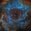 NGC 2244 Rosette Nebula,                                Sylvain Lefebvre