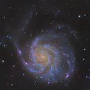 M101,                                Minseok.Chang