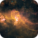 NGC 3576 Statue of Liberty,                                Fernando Oliveira...