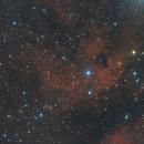 IC1318 The Butterfly Nebula,                                Dick van Kleef