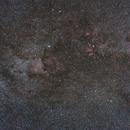 Cygnus,                                Robert Morales