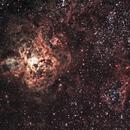 NGC2070 RC8 version,                                Djt
