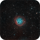 Abell 31 (SH2-90) in HOO,                                DDS_Observatory