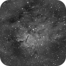 NGC6820 et NGC6823 - Ha,                                Daniel Fournier