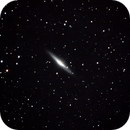NGC 2683 (cropped),                                Robin Clark - EAA imager