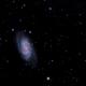 Barred Spiral Galaxy NGC 2903,                                Richard Pattie