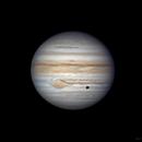 Jupiter and Callisto,                                stricnine