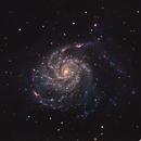 M101 - The Pinwheel Galaxy - closeup,                                Almos Balasi
