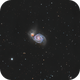 Messier 51 Whirlpool Galaxy,                                NelsonAstrofoto