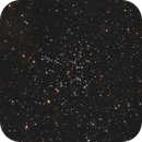 M38 Starfish Cluster,                                Elmiko