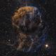 Jellyfish Nebula (IC443) in Narrowband w/ RGB Stars,                                Temu Nana