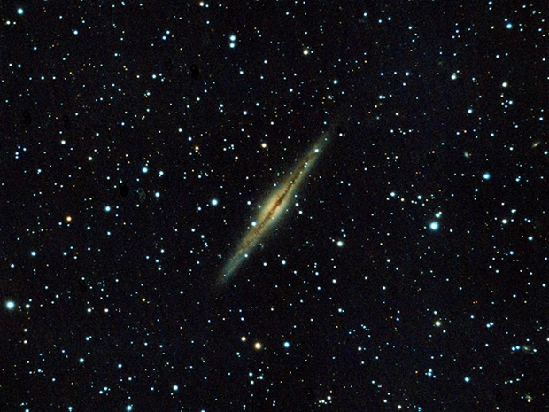 NGC 891 in Andromeda,                                sungazer