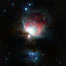 Orion Nebula,                                Ed Albin