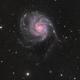 M101,                                Jonathan Young