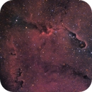 IC 1396 la Trompe d'éléphant Ha-RVB,                                Le Mouellic Guillaume
