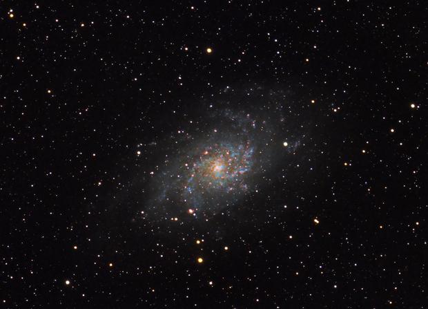 Triangulum Galaxy M33,                                Derek Foster