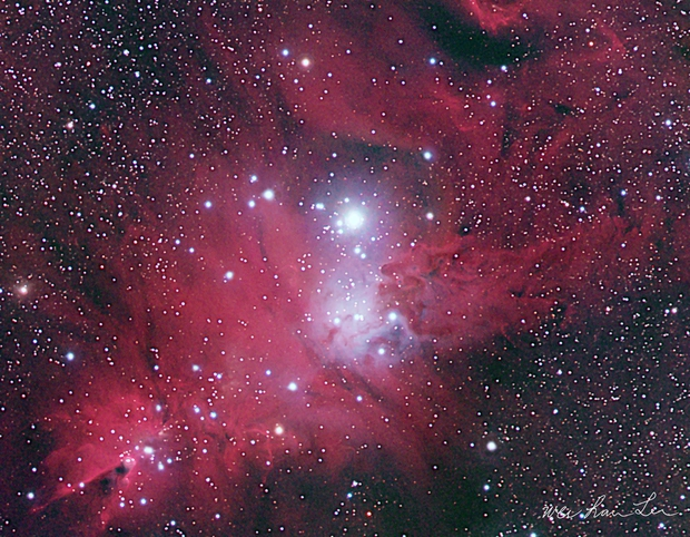 Cone and Fox Fur Nebula - HRGB Image,                                wei-hann-Lee