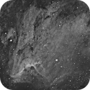 IC 5070 Pelican Nebula,                                Mike Miller